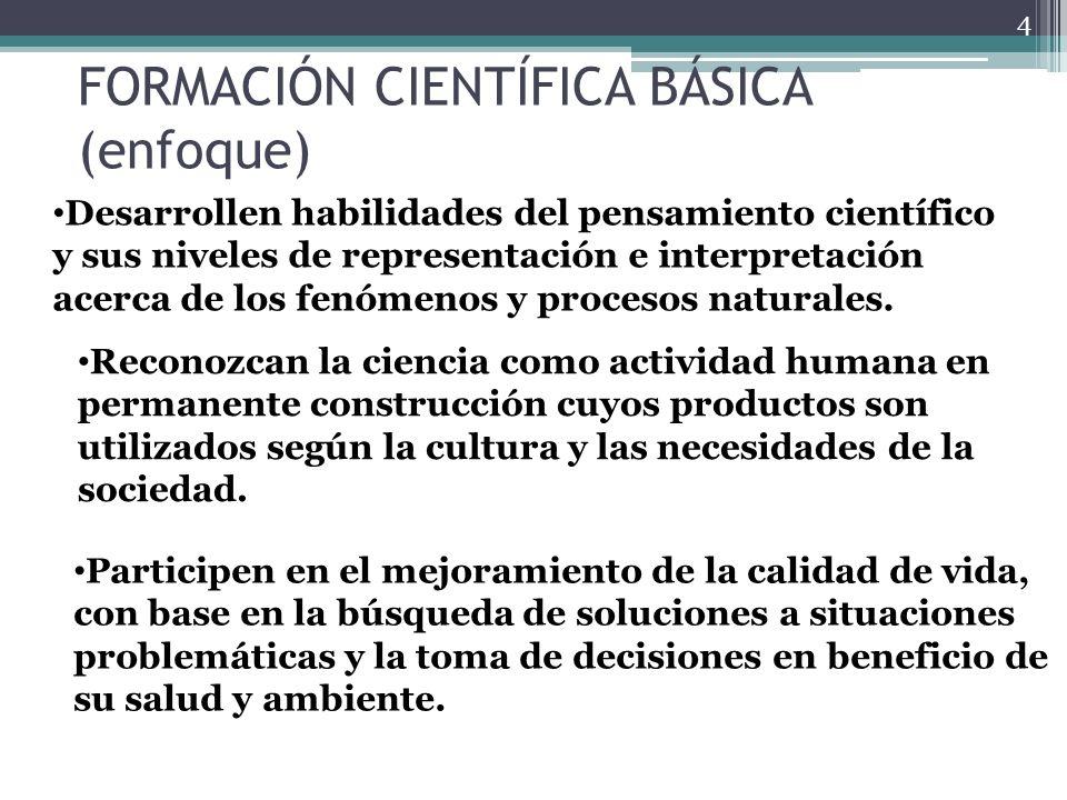 FORMACIÓN CIENTÍFICA BÁSICA (enfoque)