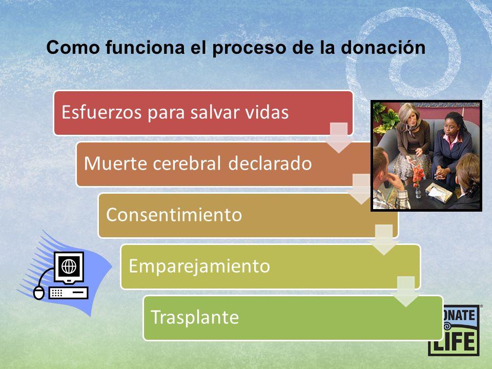 Como funciona el proceso de la donación