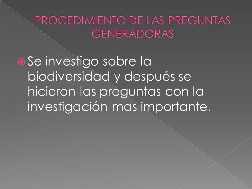 PROCEDIMIENTO DE LAS PREGUNTAS GENERADORAS