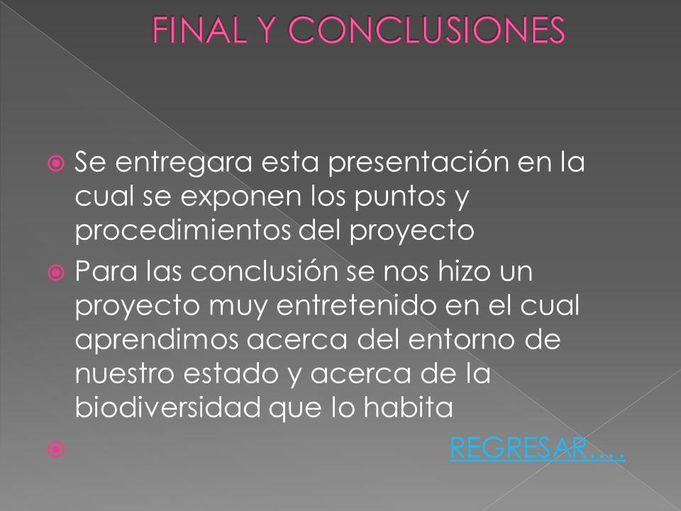 FINAL Y CONCLUSIONES Se entregara esta presentación en la cual se exponen los puntos y procedimientos del proyecto.