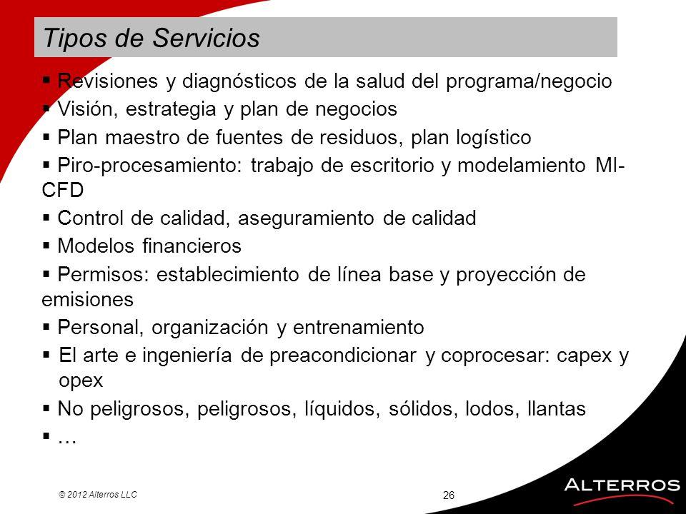 Tipos de Servicios Revisiones y diagnósticos de la salud del programa/negocio. Visión, estrategia y plan de negocios.