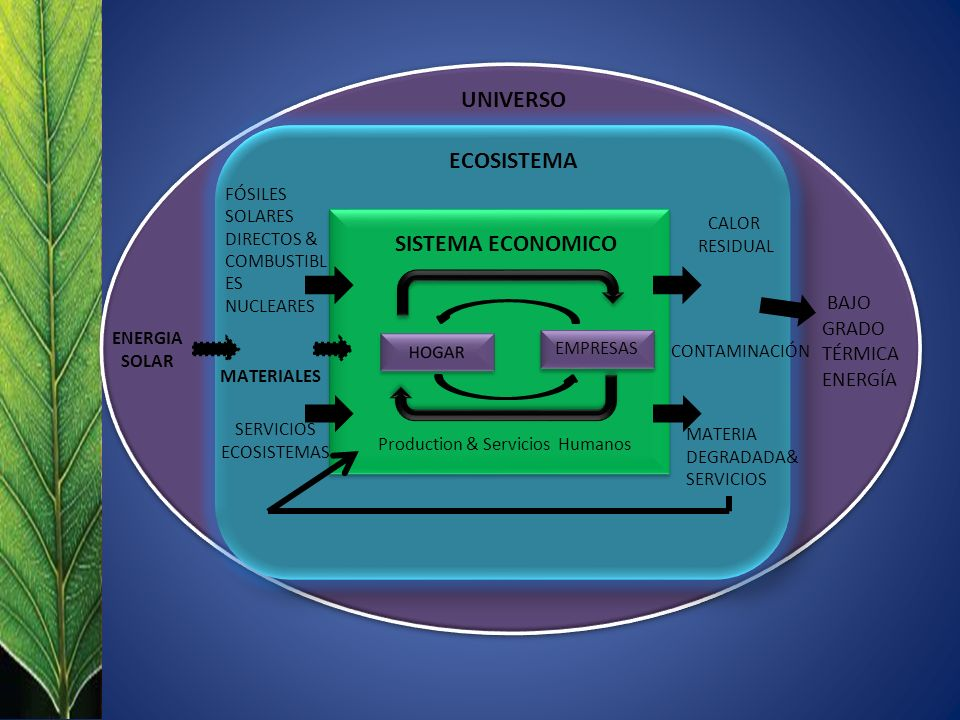 UNIVERSO ECOSISTEMA SISTEMA ECONOMICO
