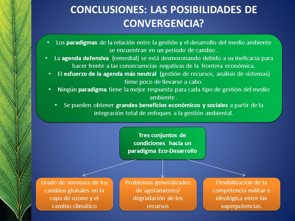 CONCLUSIONES: LAS POSIBILIDADES DE CONVERGENCIA