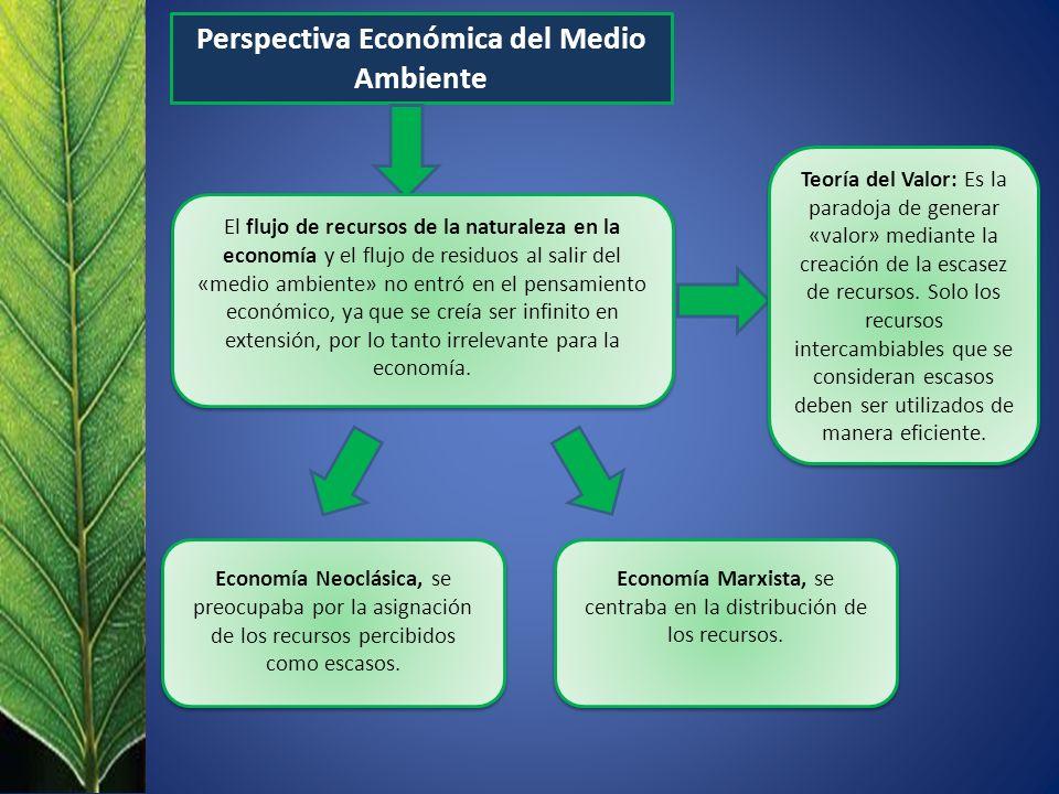 Perspectiva Económica del Medio Ambiente