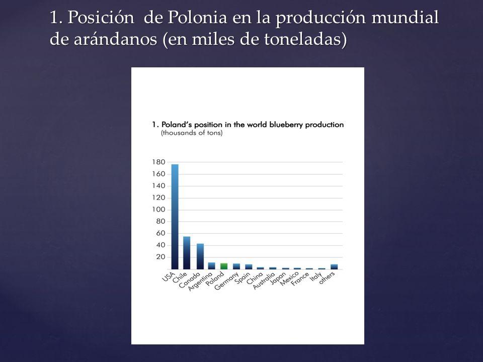 1. Posición de Polonia en la producción mundial de arándanos (en miles de toneladas)