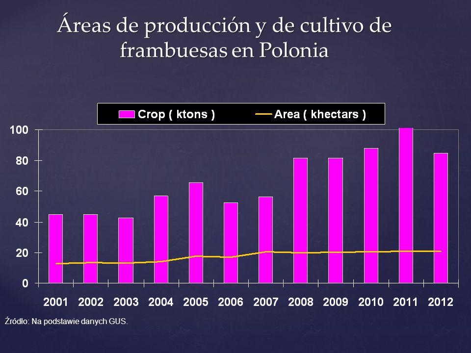 Áreas de producción y de cultivo de frambuesas en Polonia