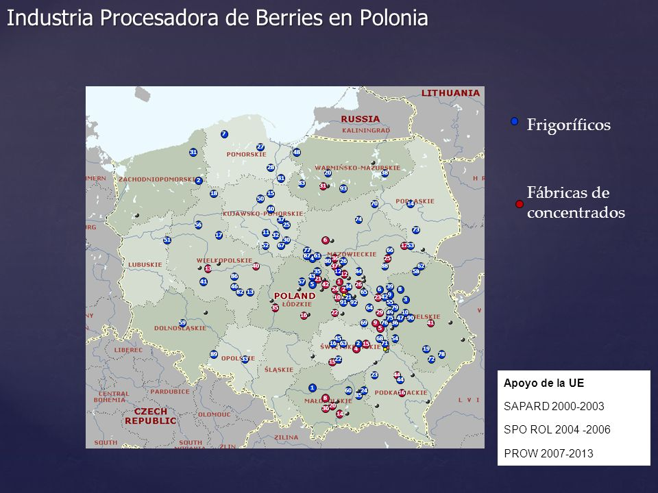 Industria Procesadora de Berries en Polonia