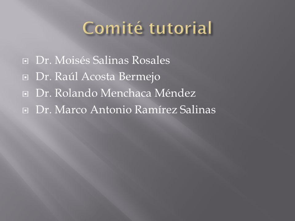 Comité tutorial Dr. Moisés Salinas Rosales Dr. Raúl Acosta Bermejo