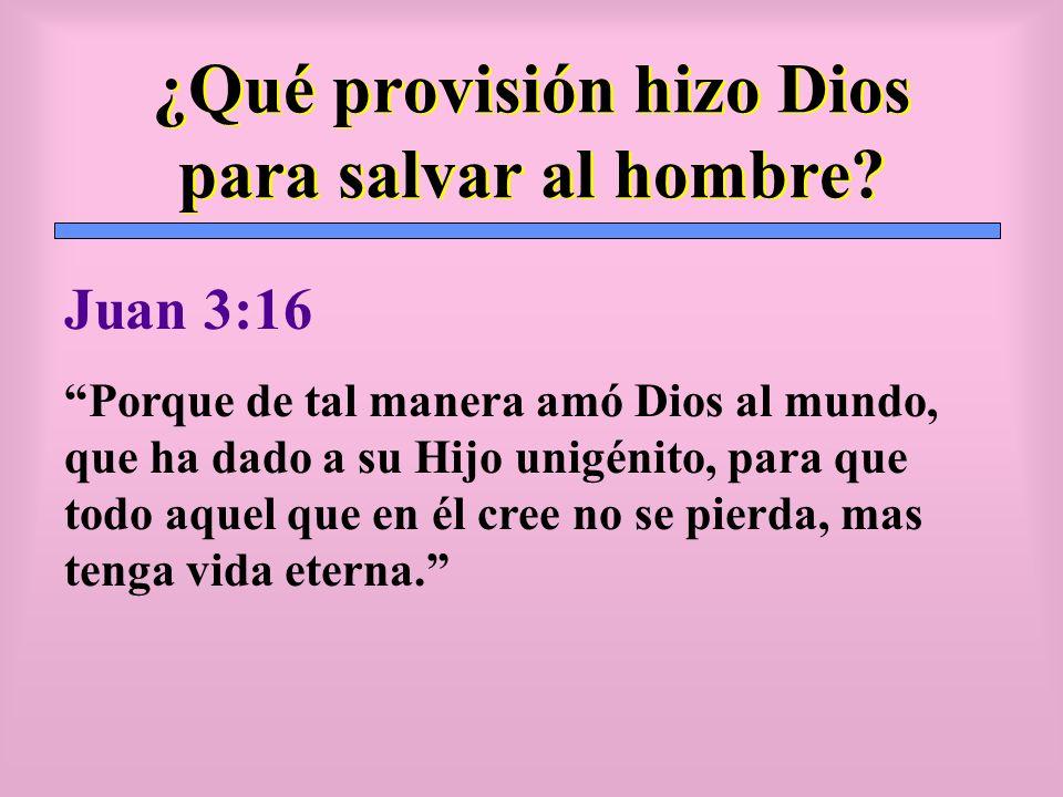 ¿Qué provisión hizo Dios para salvar al hombre
