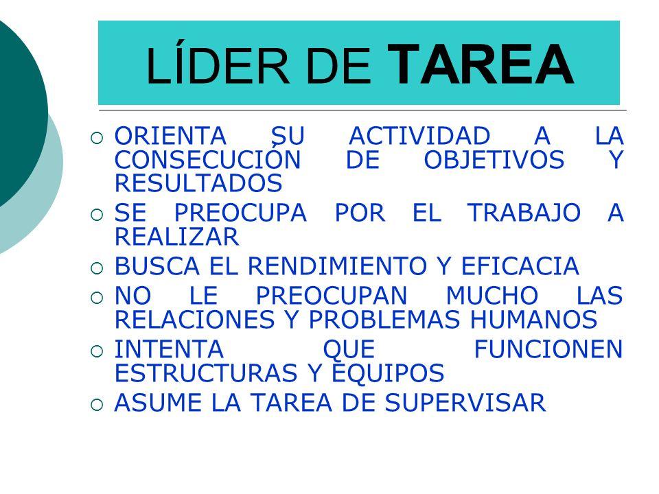 LÍDER DE TAREAORIENTA SU ACTIVIDAD A LA CONSECUCIÓN DE OBJETIVOS Y RESULTADOS. SE PREOCUPA POR EL TRABAJO A REALIZAR.