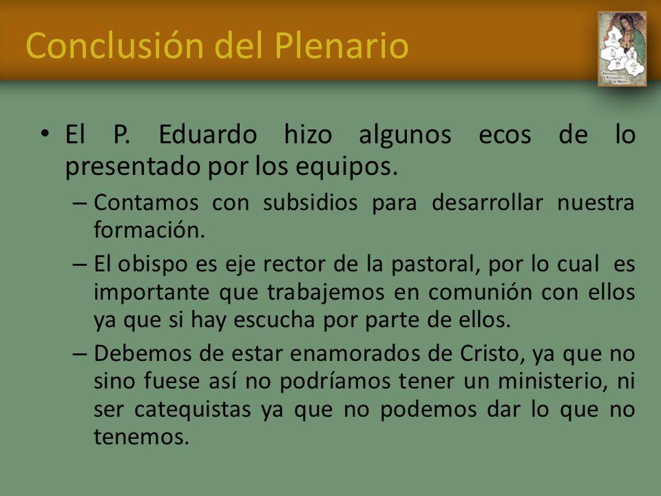 Conclusión del Plenario