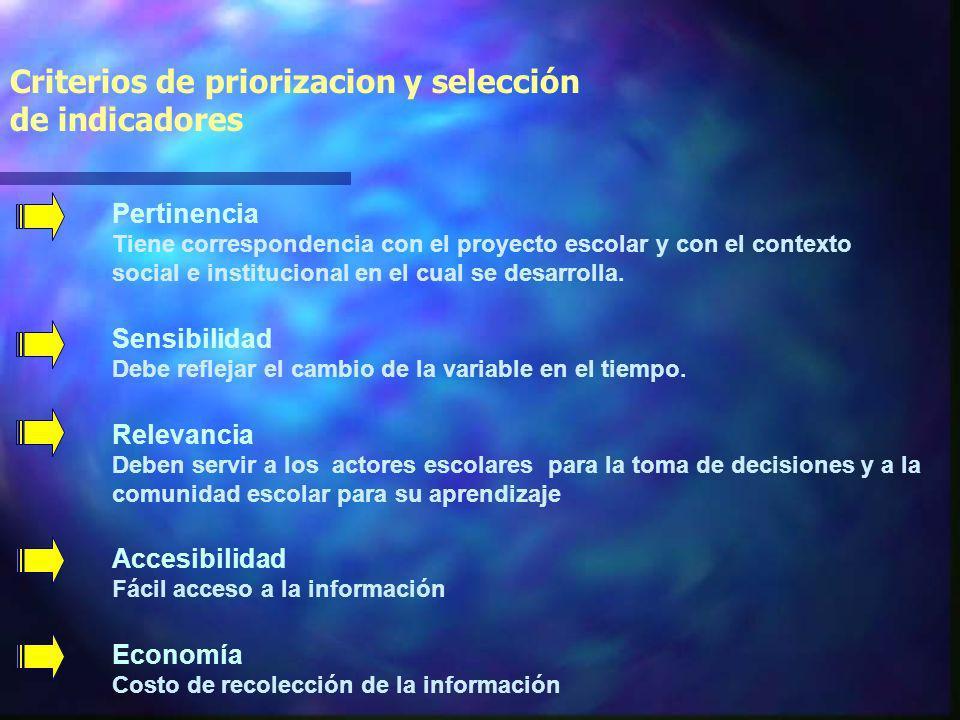 Criterios de priorizacion y selección de indicadores