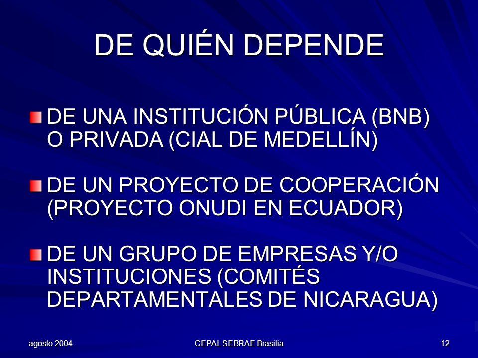 DE QUIÉN DEPENDE DE UNA INSTITUCIÓN PÚBLICA (BNB) O PRIVADA (CIAL DE MEDELLÍN) DE UN PROYECTO DE COOPERACIÓN (PROYECTO ONUDI EN ECUADOR)