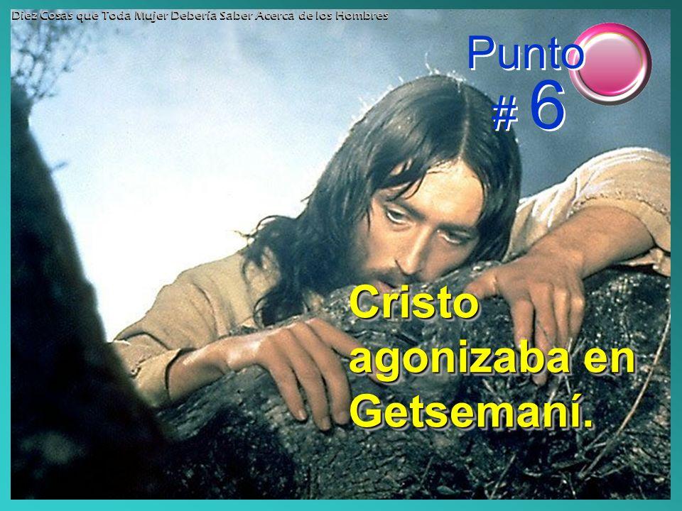 Cristo agonizaba en Getsemaní.