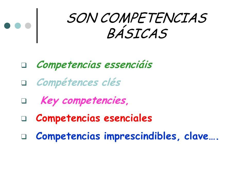 SON COMPETENCIAS BÁSICAS