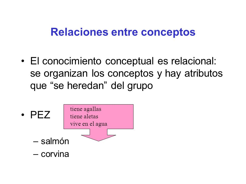 Relaciones entre conceptos