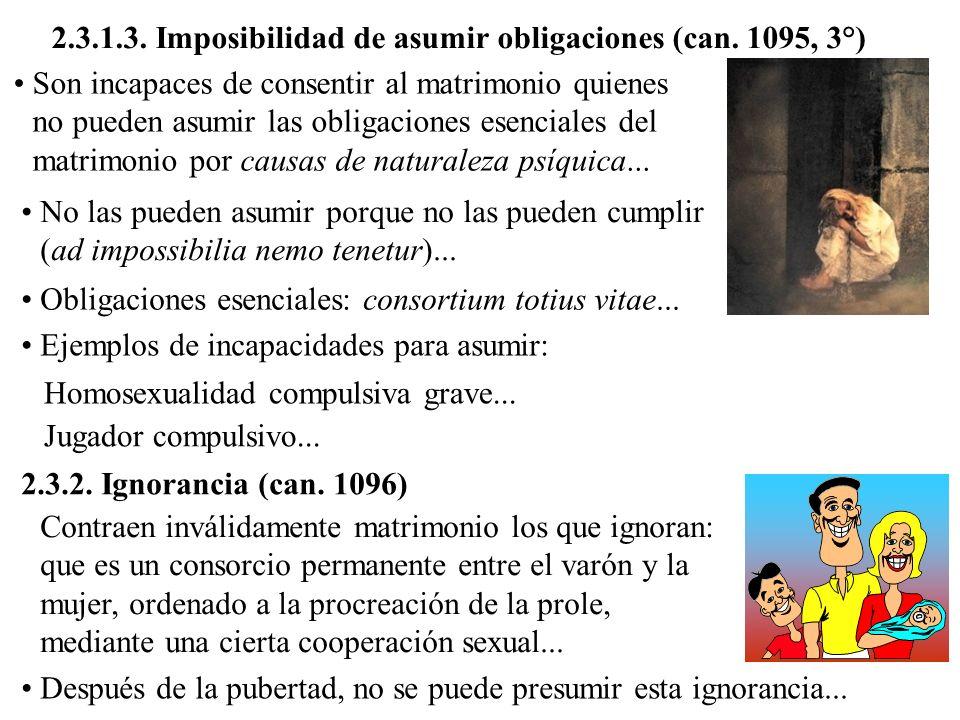 2.3.1.3. Imposibilidad de asumir obligaciones (can. 1095, 3°)