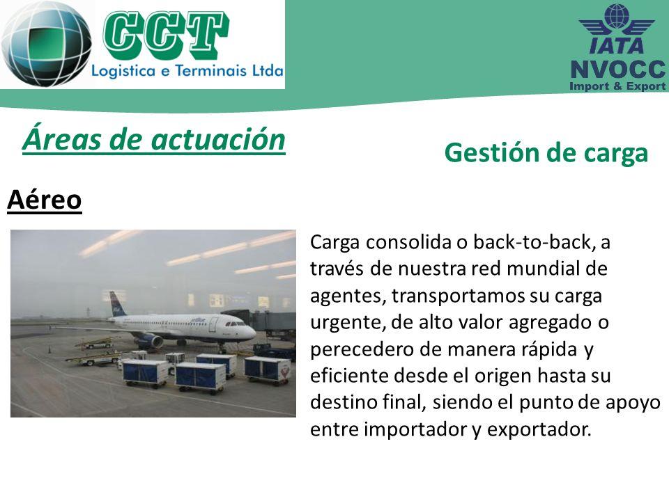 Áreas de actuación Gestión de carga Aéreo