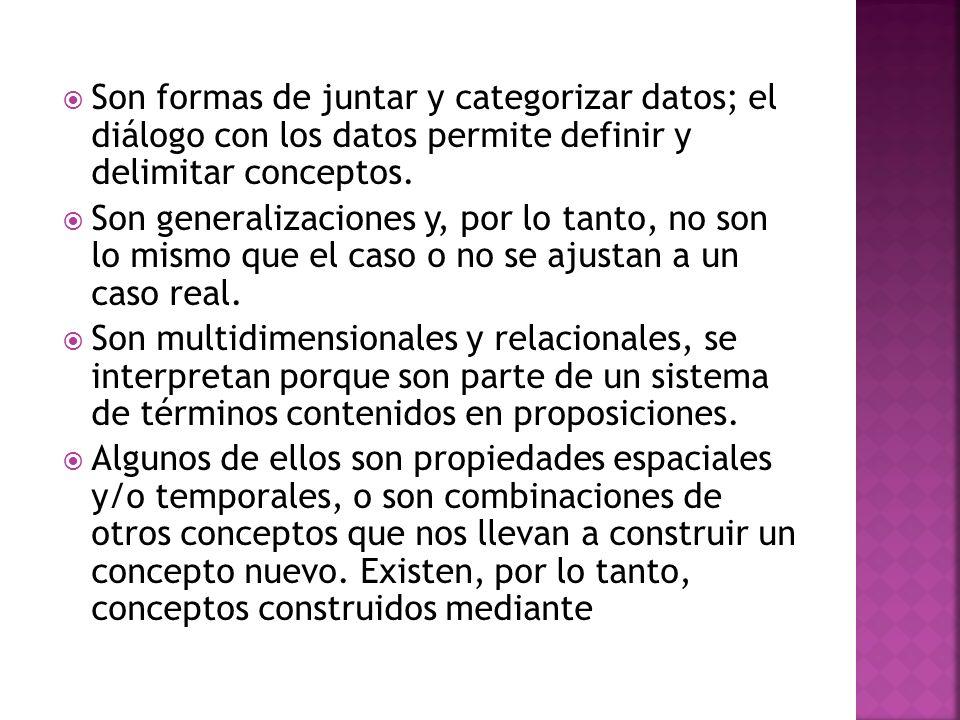 Son formas de juntar y categorizar datos; el diálogo con los datos permite definir y delimitar conceptos.