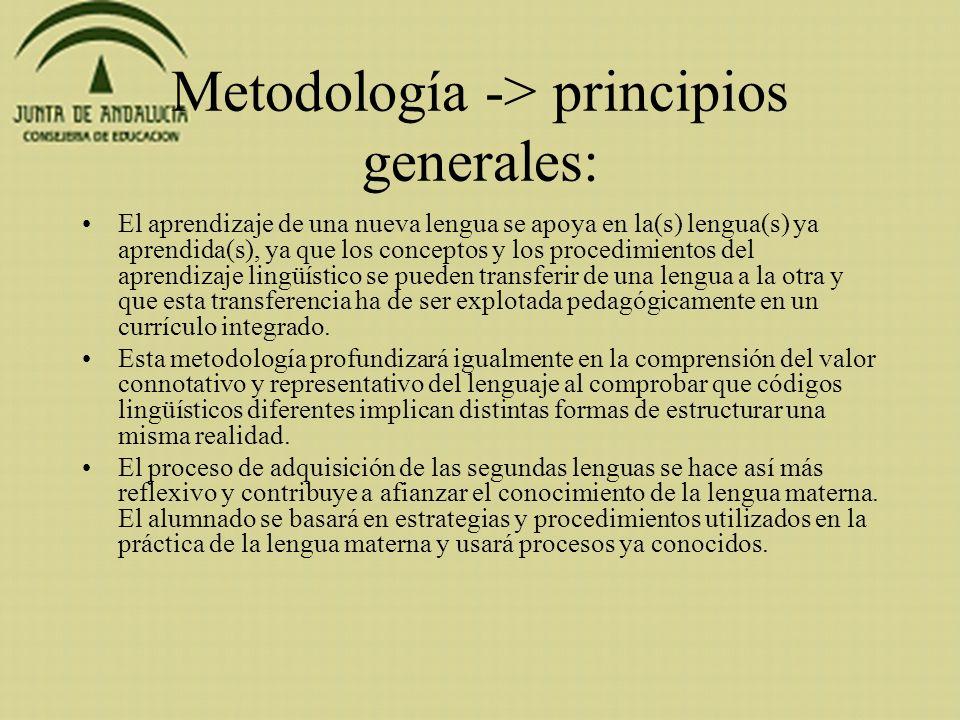 Metodología -> principios generales: