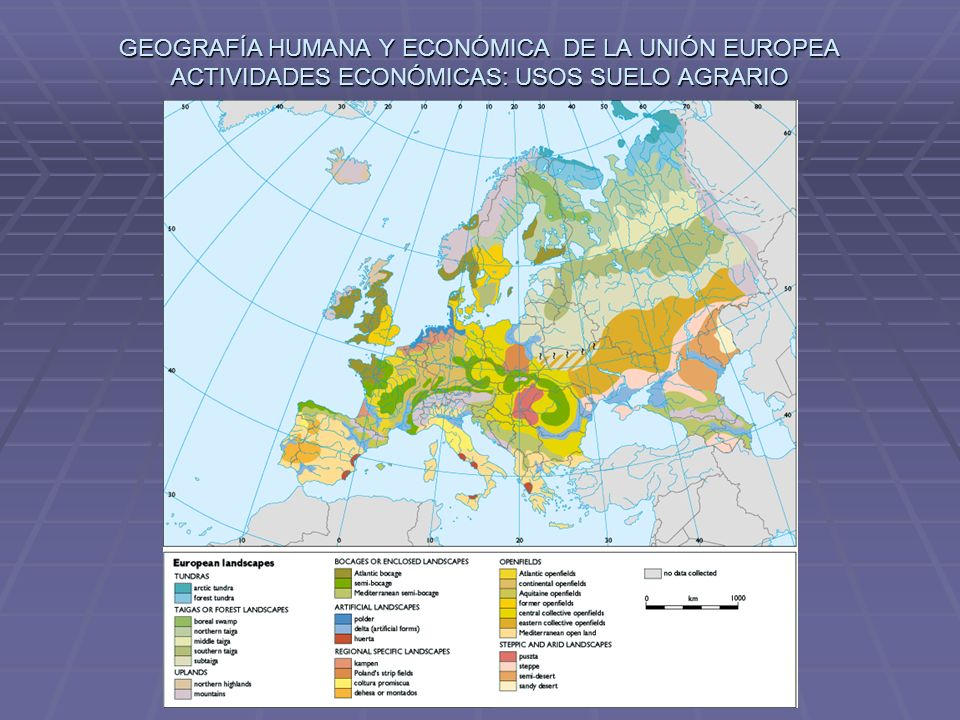 GEOGRAFÍA HUMANA Y ECONÓMICA DE LA UNIÓN EUROPEA ACTIVIDADES ECONÓMICAS: USOS SUELO AGRARIO
