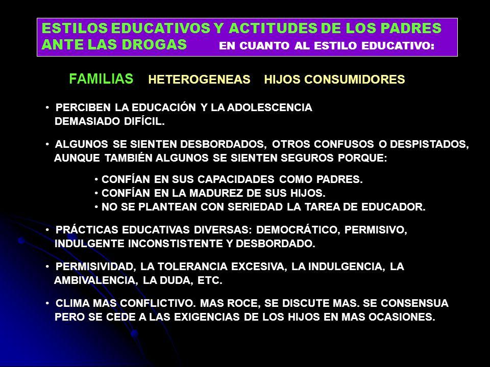 FAMILIAS HETEROGENEAS HIJOS CONSUMIDORES