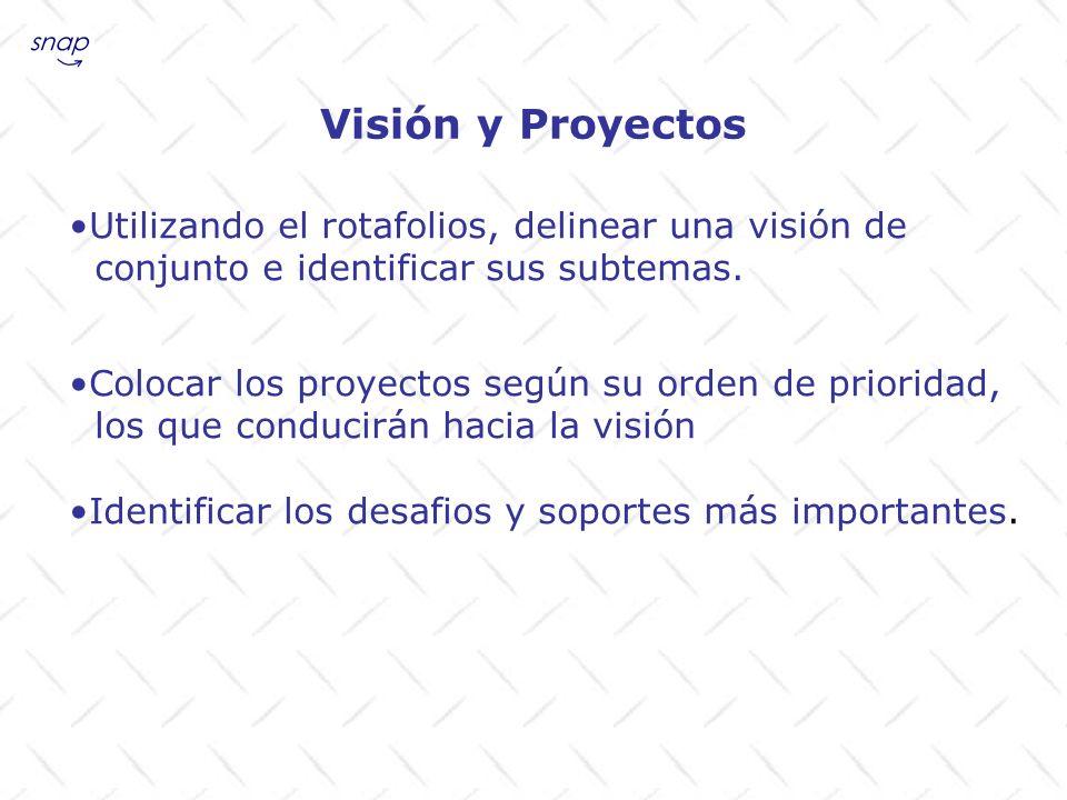 Visión y Proyectos Utilizando el rotafolios, delinear una visión de