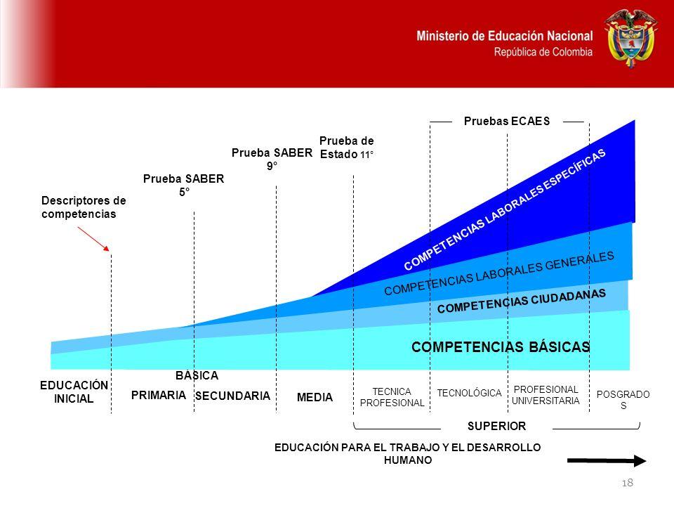 COMPETENCIAS BÁSICAS Pruebas ECAES Prueba de Estado 11°