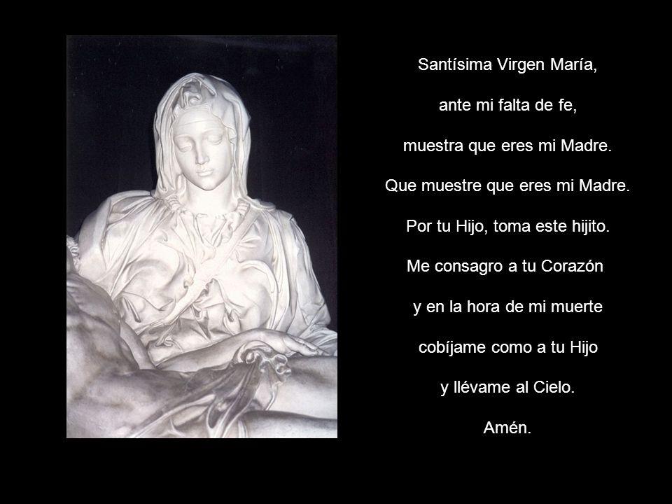 Santísima Virgen María, ante mi falta de fe,