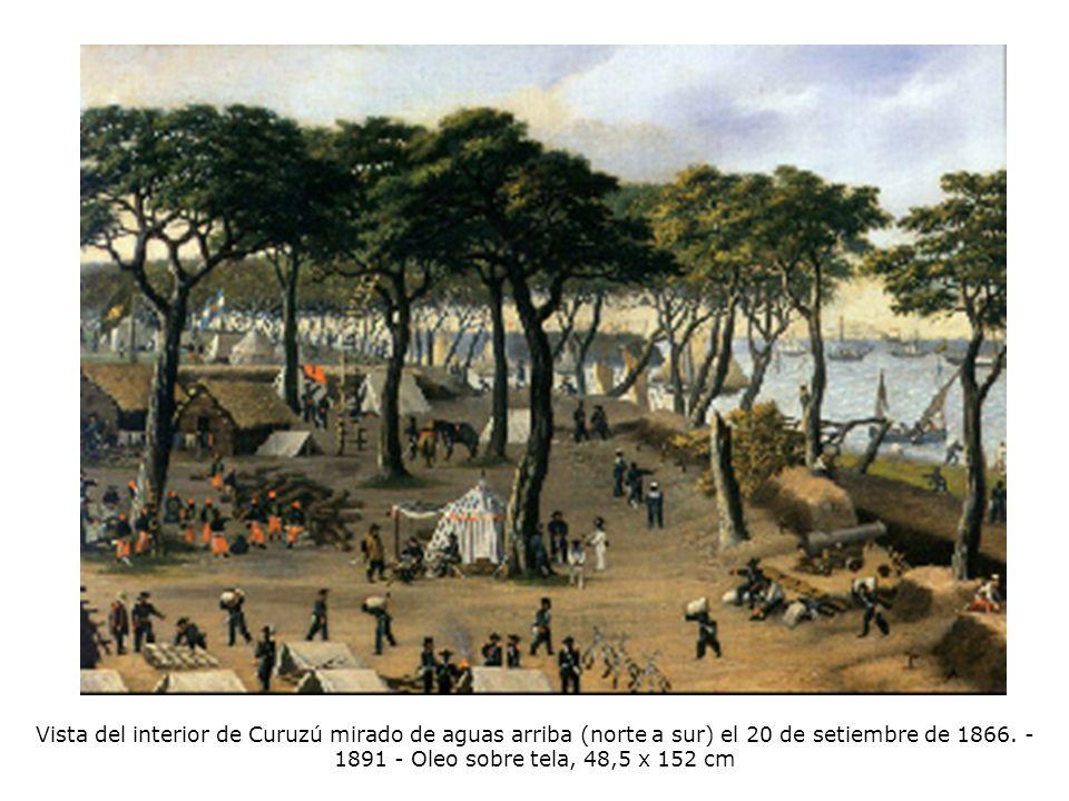 Vista del interior de Curuzú mirado de aguas arriba (norte a sur) el 20 de setiembre de 1866.