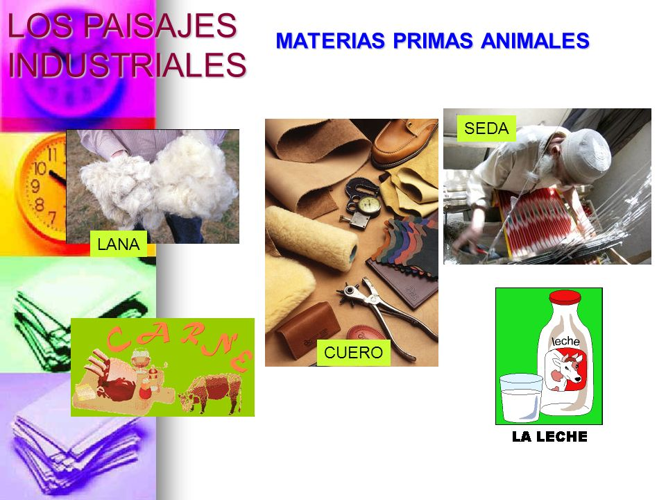 MATERIAS PRIMAS ANIMALES