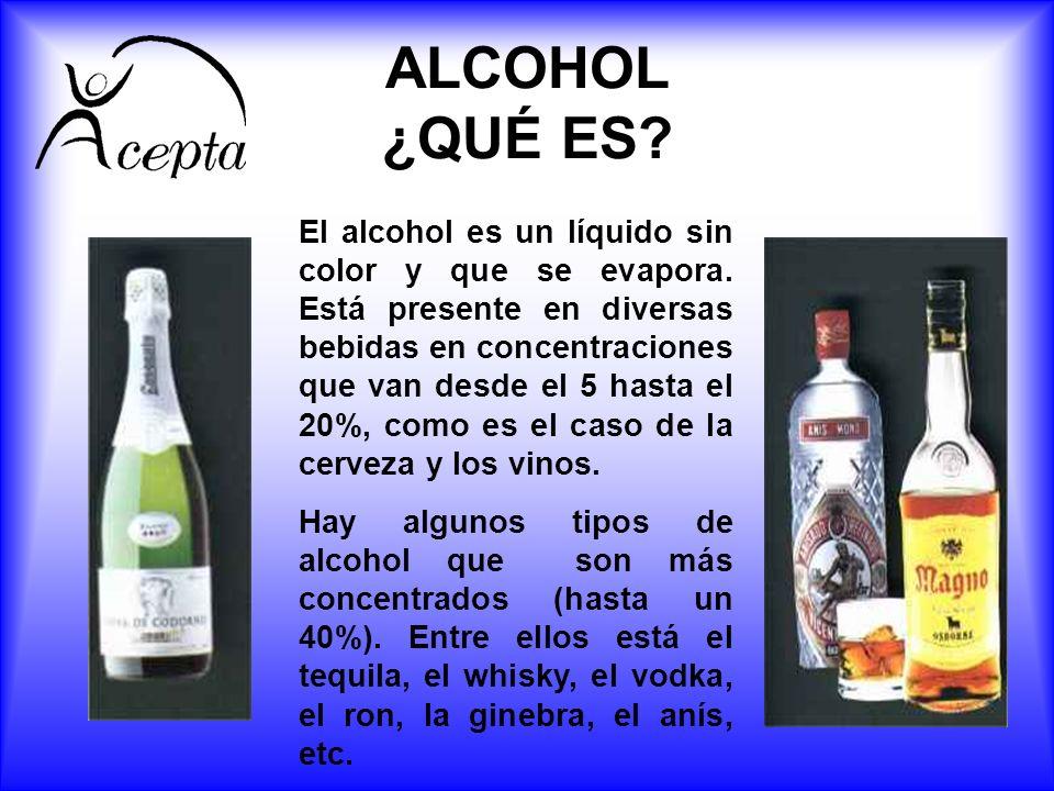 ALCOHOL ¿QUÉ ES