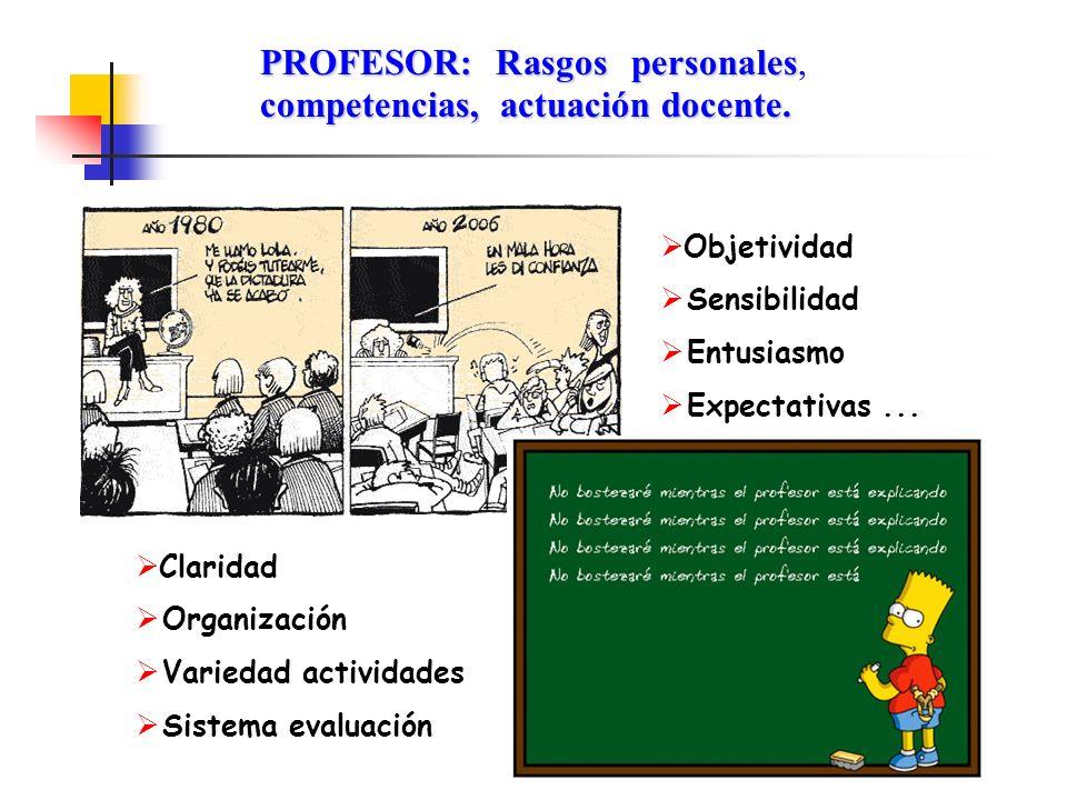 PROFESOR: Rasgos personales, competencias, actuación docente.