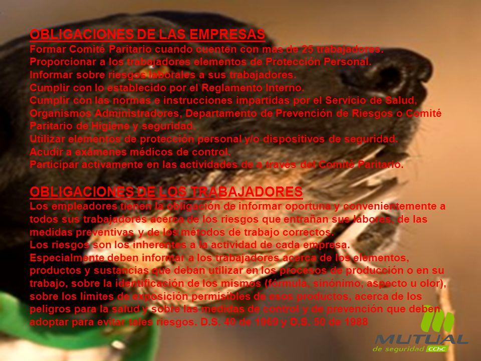 OBLIGACIONES DE LAS EMPRESAS