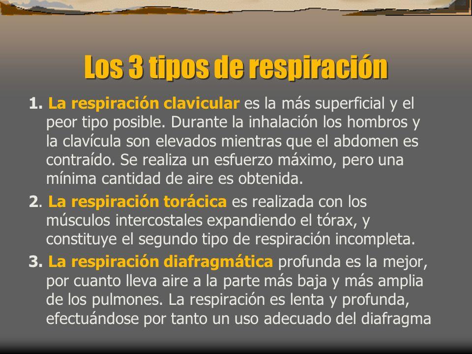 Los 3 tipos de respiración