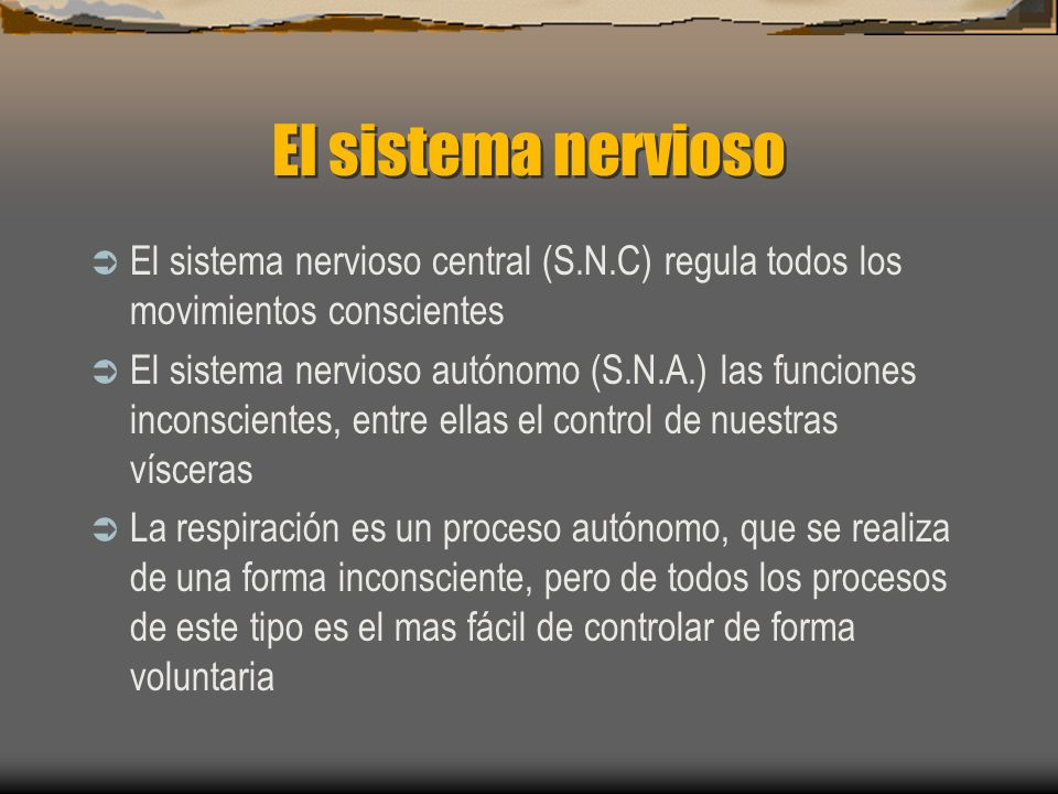 El sistema nervioso El sistema nervioso central (S.N.C) regula todos los movimientos conscientes.