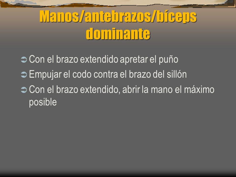 Manos/antebrazos/bíceps dominante