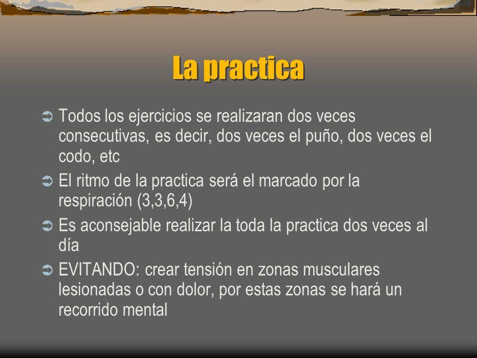 La practicaTodos los ejercicios se realizaran dos veces consecutivas, es decir, dos veces el puño, dos veces el codo, etc.