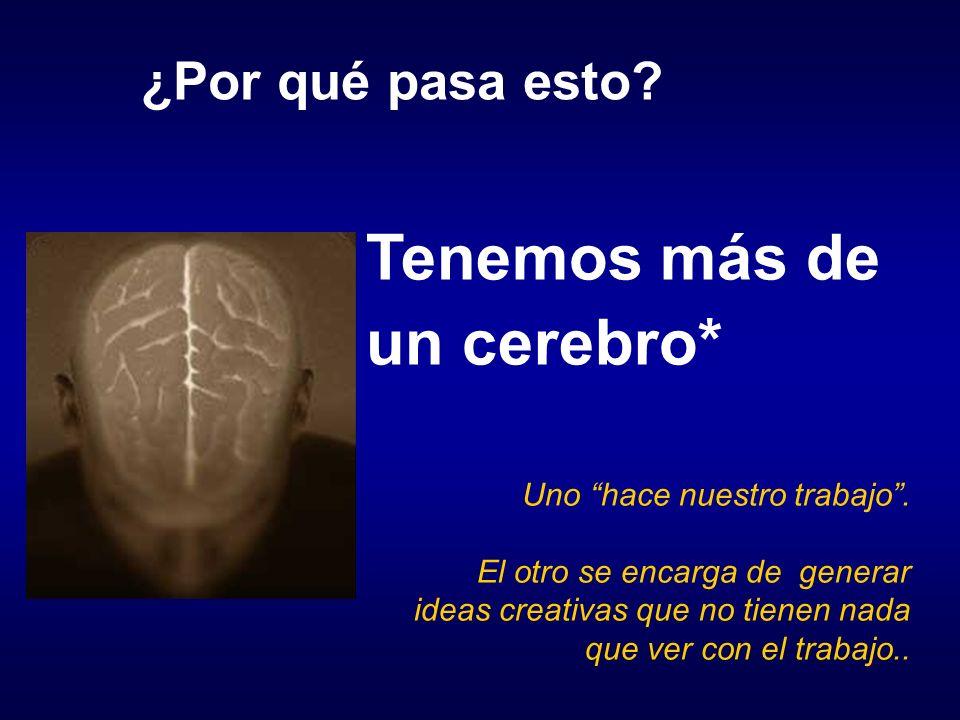 Tenemos más de un cerebro*