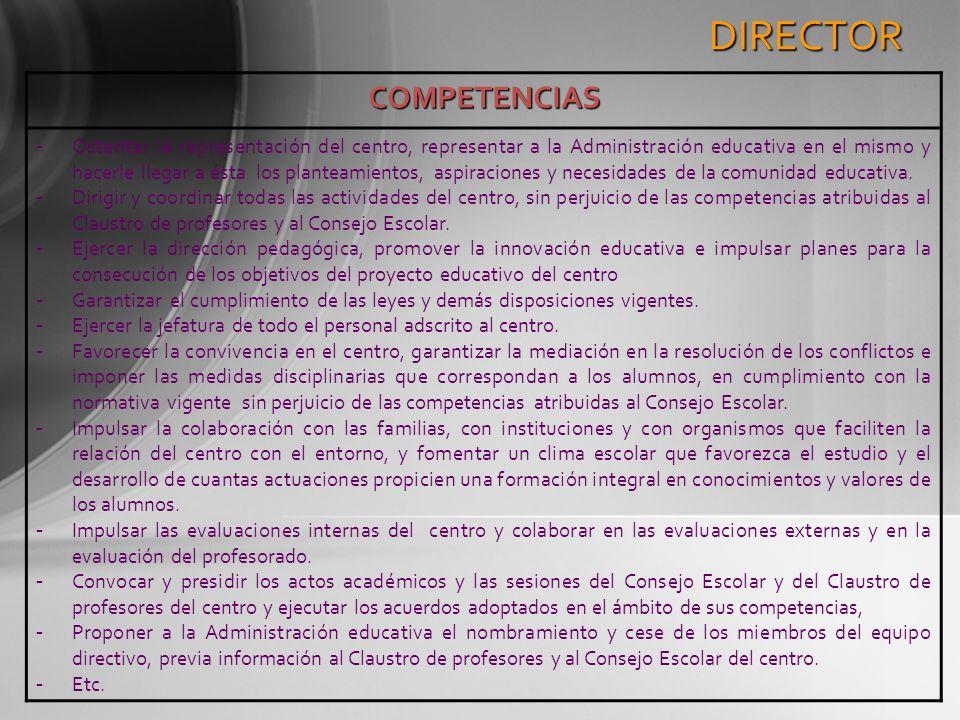DIRECTOR COMPETENCIAS