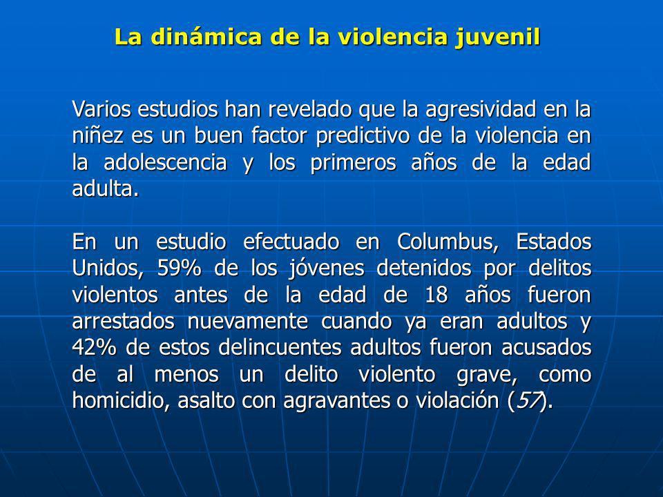 La dinámica de la violencia juvenil