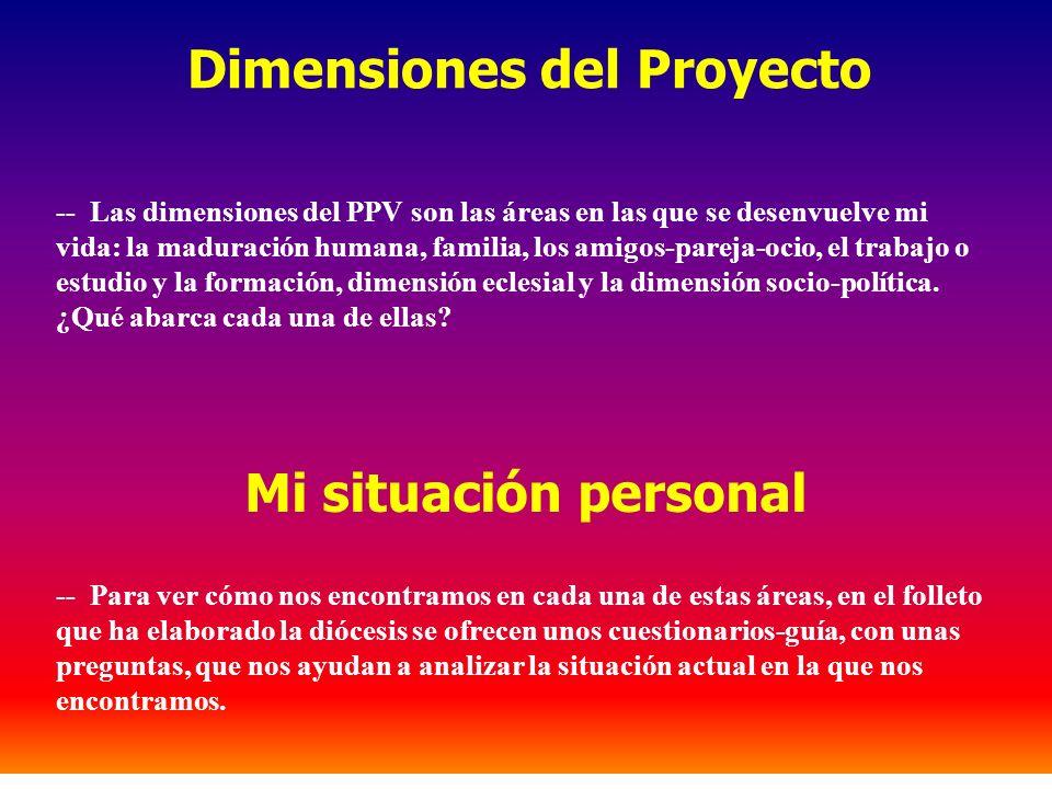 Dimensiones del Proyecto