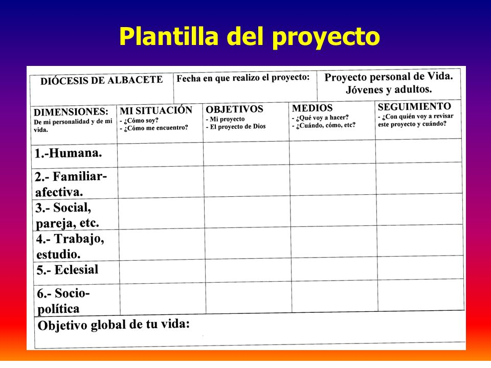 Plantilla del proyecto