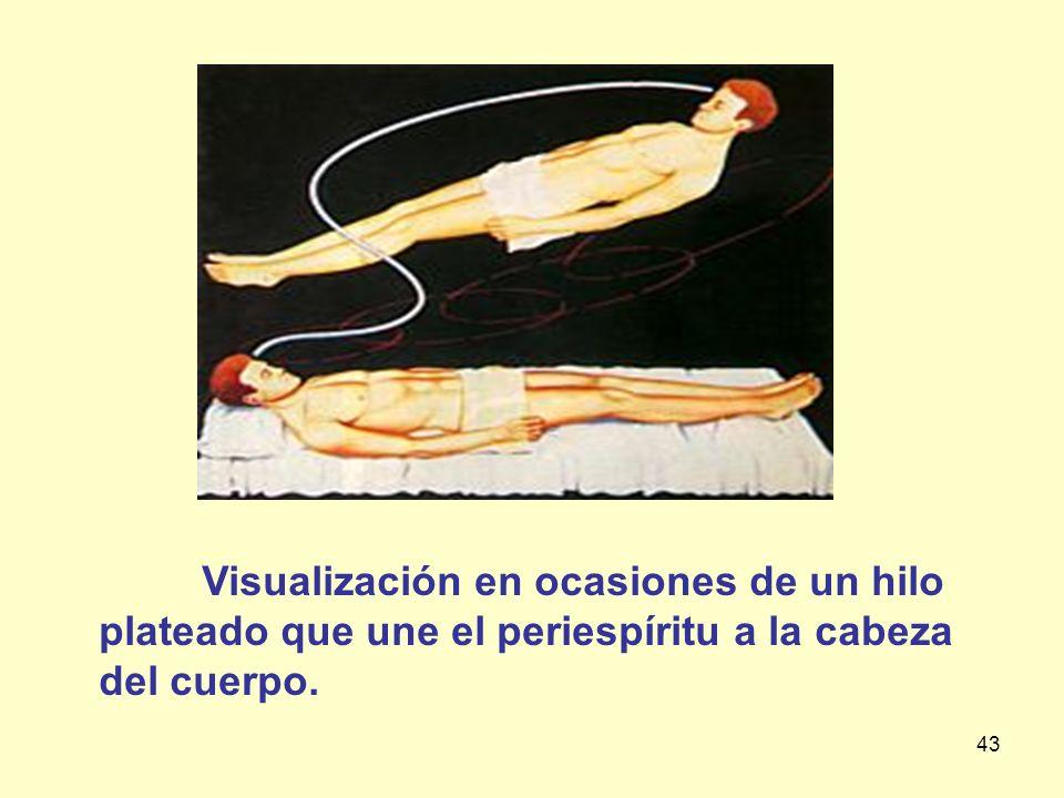 Visualización en ocasiones de un hilo plateado que une el periespíritu a la cabeza del cuerpo.
