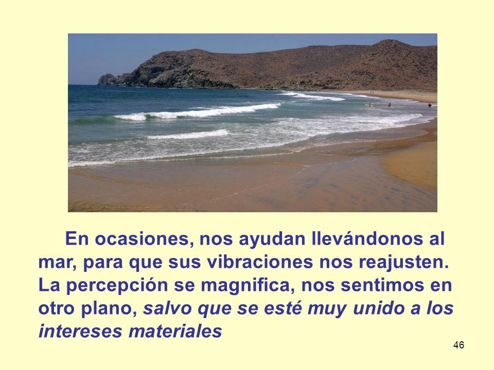 En ocasiones, nos ayudan llevándonos al mar, para que sus vibraciones nos reajusten.
