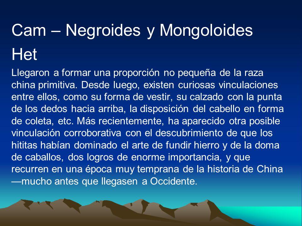 Cam – Negroides y Mongoloides Het