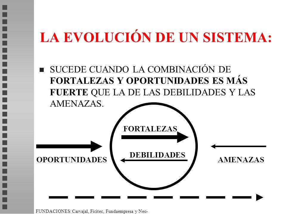 LA EVOLUCIÓN DE UN SISTEMA: