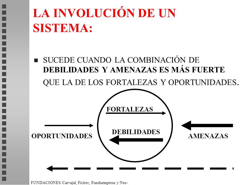 LA INVOLUCIÓN DE UN SISTEMA: