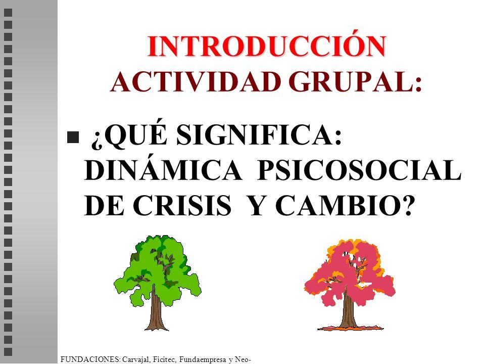 INTRODUCCIÓN ACTIVIDAD GRUPAL: