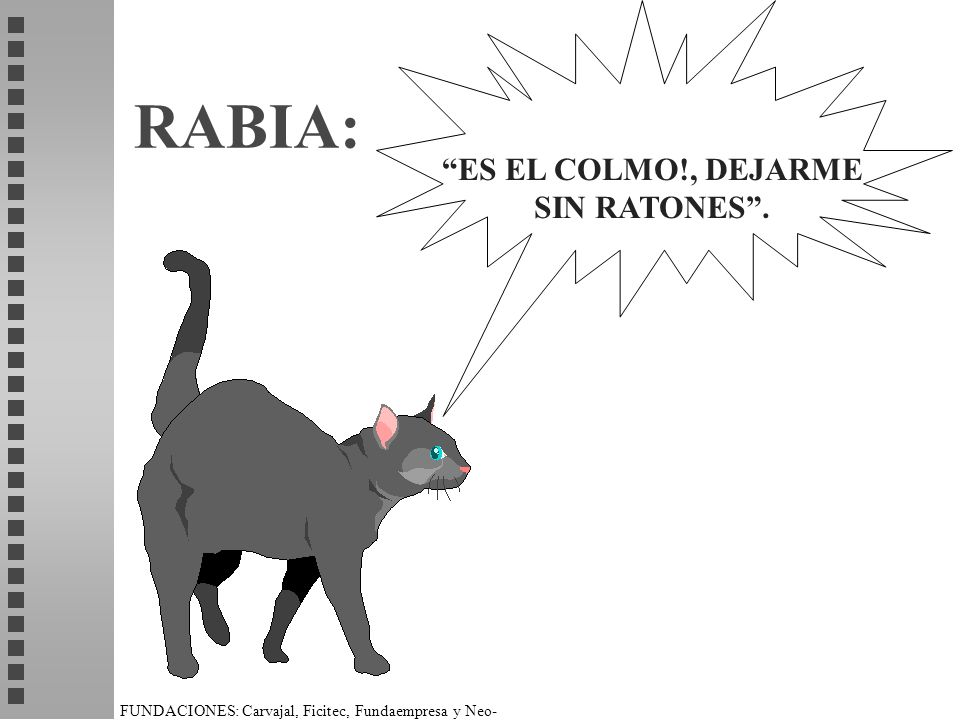 ES EL COLMO!, DEJARME SIN RATONES .